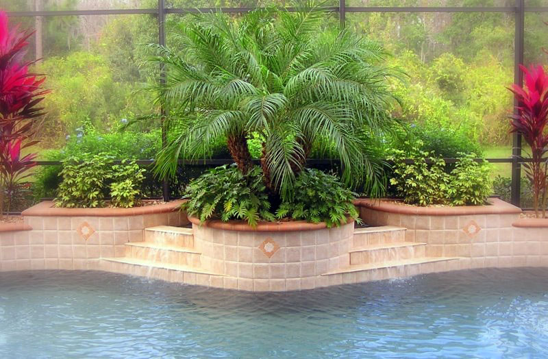 Swimming pool photos of swimming pool landscaping for Pool landscaping ideas